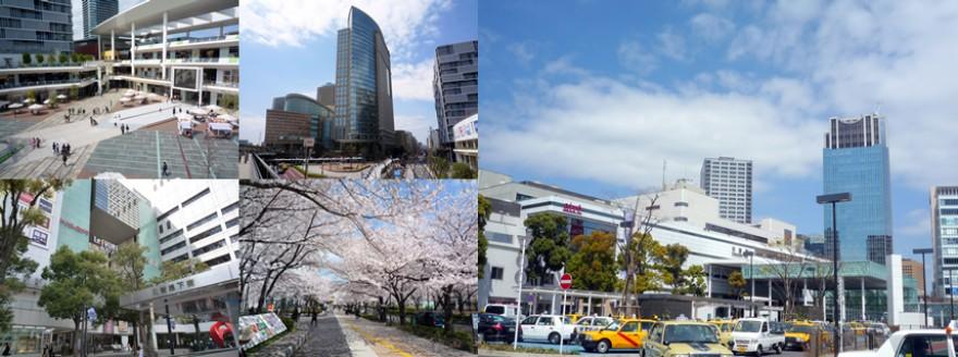 東京地方税理士会川崎南支部は、神奈川県川崎市川崎区、幸区の税理士及び税理士法人の団体です